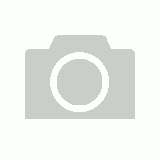 Pet+Me Universal Pet Brush Red - Large Dog